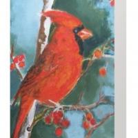 Solitary Cardinal