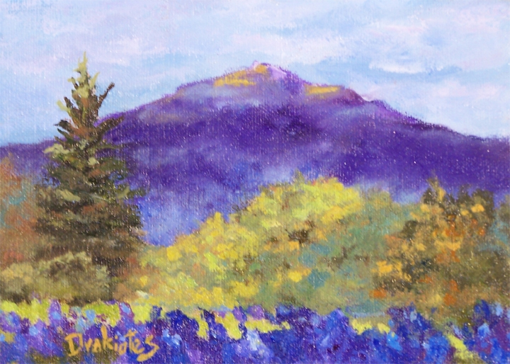 Afternoon-light-and-Lupines-lo