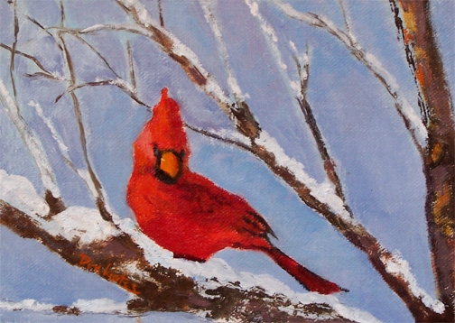Cardinal In Afternoon Light - SOLD