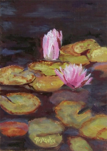 Pond Lillies - Available