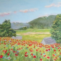 Field of Poppies - AVAILABLE