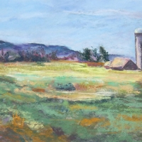 Navigating Spring Meadows-spring-meadows