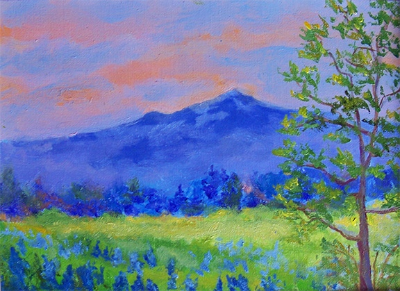 Lupines-at-Sunrise  - Available