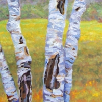Beyond the Birches - Available
