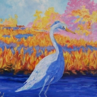 Egrets-Stand-l Available