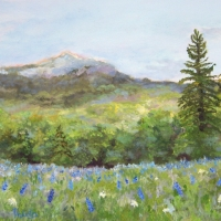 Lovely Lupines  - AVAILABLE