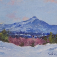 Snow Cover - Available