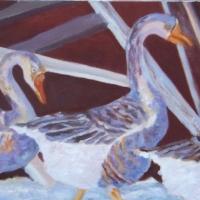 Winter Geese   Available