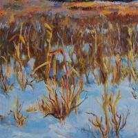 Winter-Grasses- Availabe